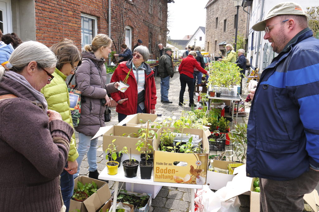 Pfanzenflohmarkt-Grüne-Schätze